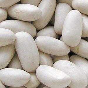 Porotos alubias blancos orgánicos