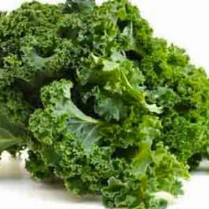 Kale Sasaki orgánico certificado