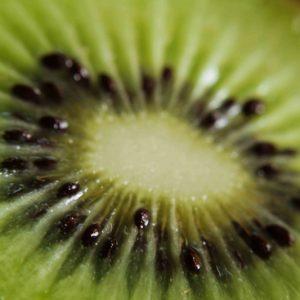 kiwi Mar del Plata orgánico
