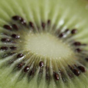Kiwi orgánico