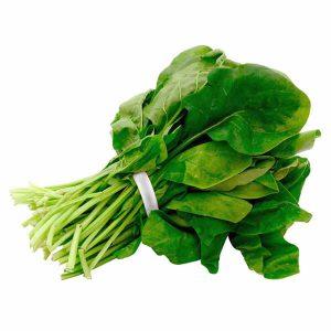 Espinaca Sasaki organico certificado