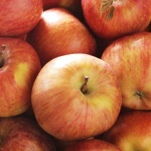 Manzana roja .Río Negro.Orgánica