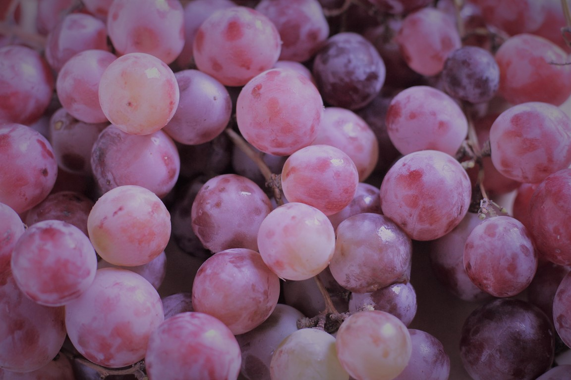 uva cereza